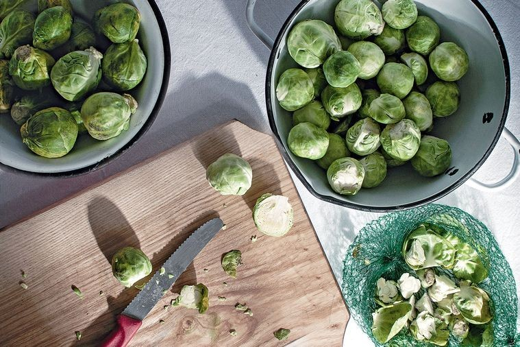 brussels-sprouts-35936-2.jpg