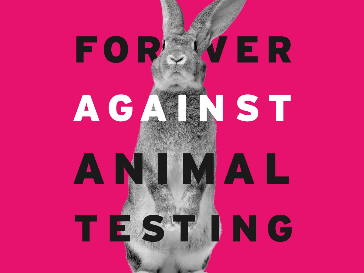 animal-testing-ariadni-adam.jpg