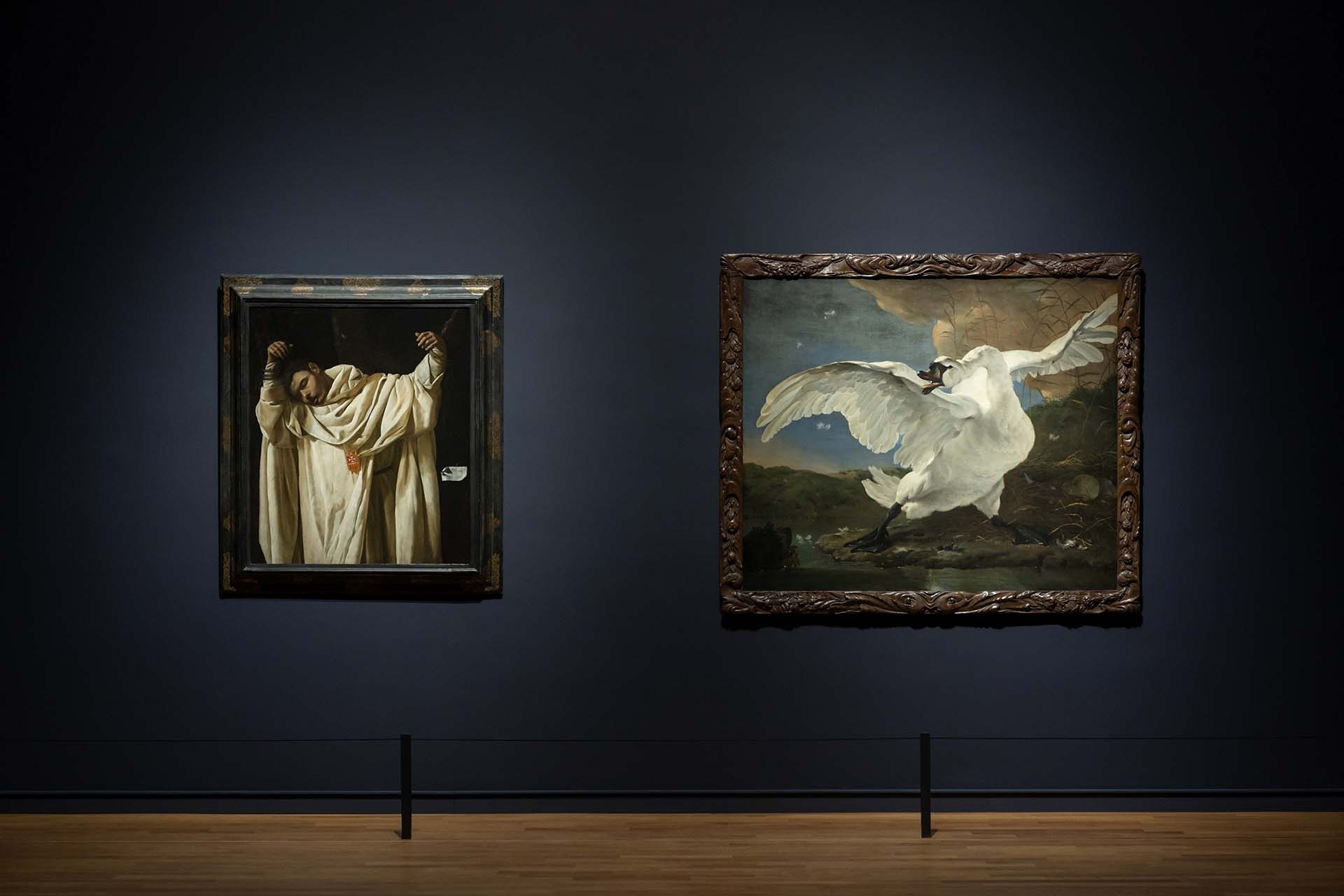 rijksmuseum-rembrandt-velazquez.jpg