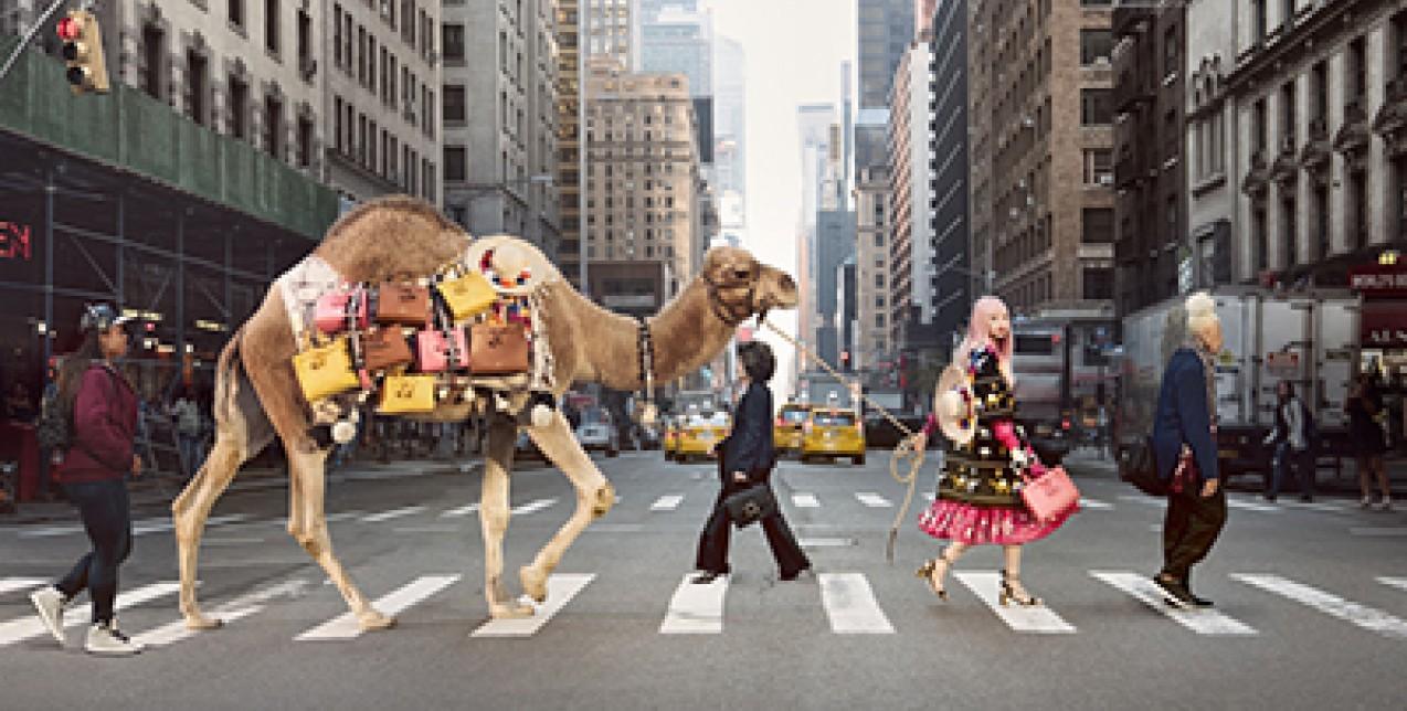 Morocco Meets NY