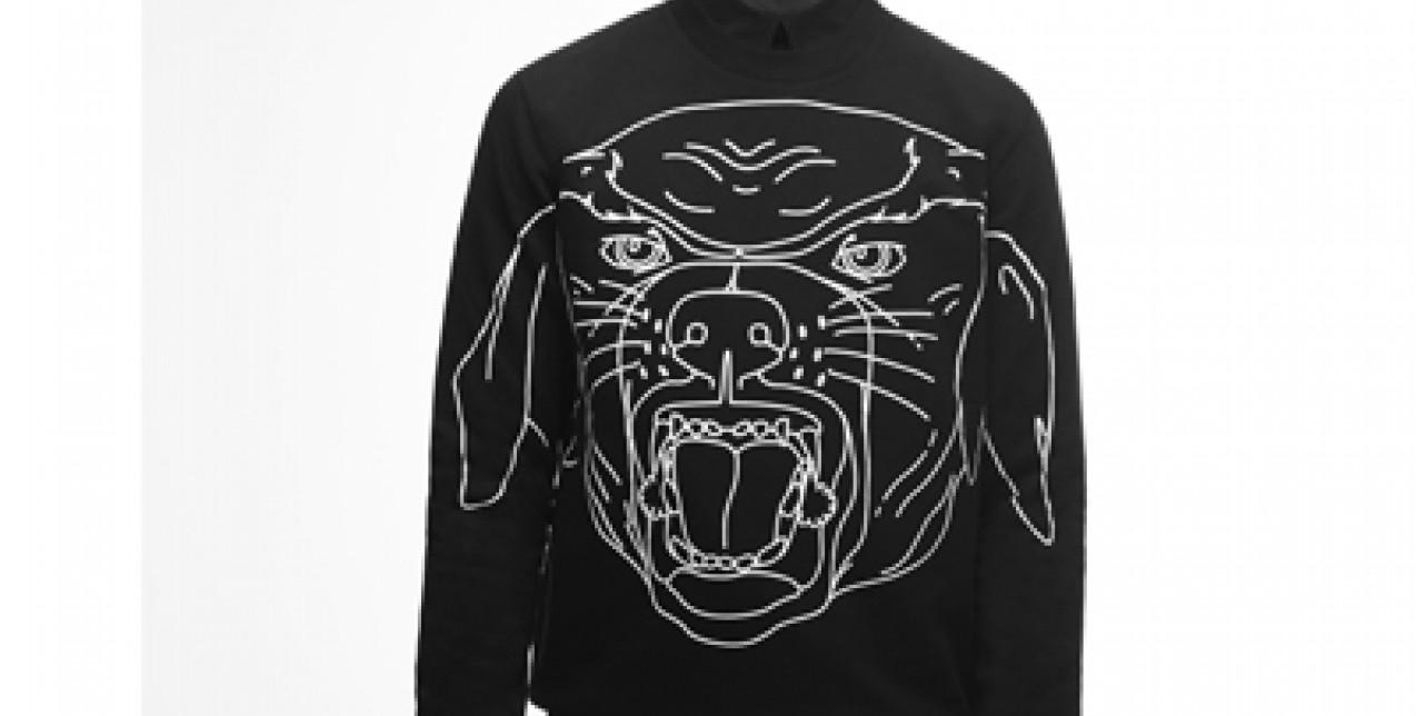 Rottweiler is Back