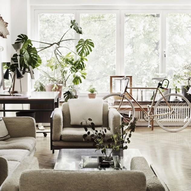 4 τρόποι για να εντάξετε τα πράσινα φυτά στον χώρο σας