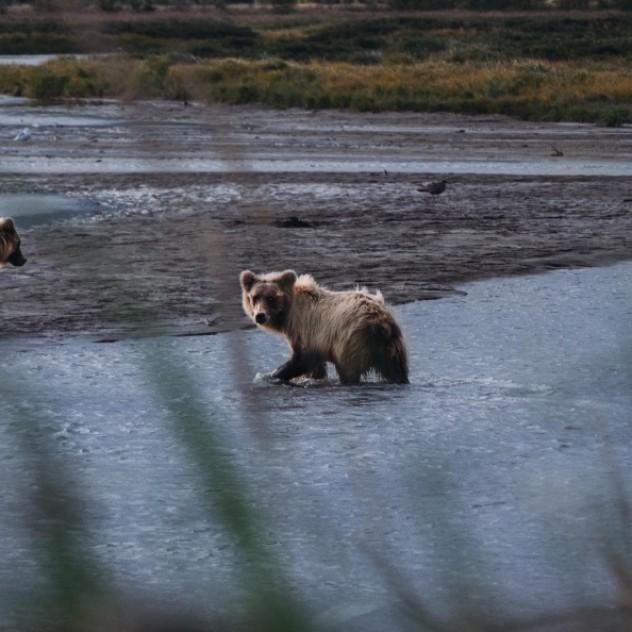 Ταξιδέψτε στη μακρινή Αλάσκα μέσα από εικόνες που κόβουν την ανάσα