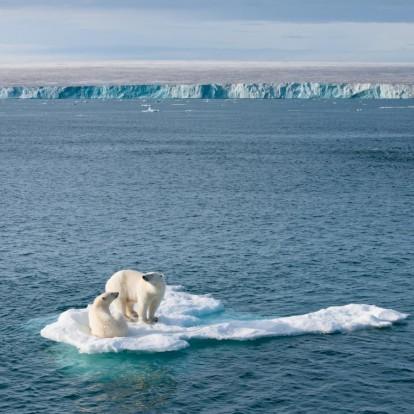 Save the planet: Απλές, καθημερινές συνήθειες που μπορούν να σώσουν τον πλανήτη