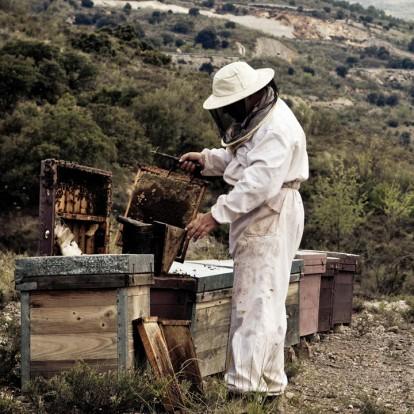 Melitheon: Το μέλι των Θεών